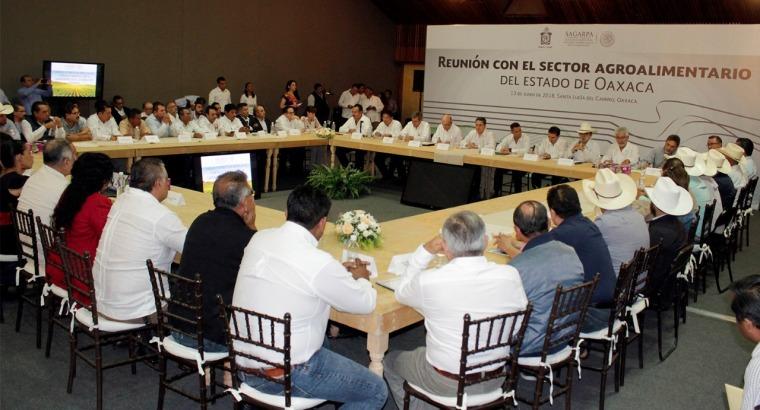 Refrendan Gobierno del Estado y Sagarpa compromiso por el desarrollo agropecuario de Oaxaca (3).jpeg