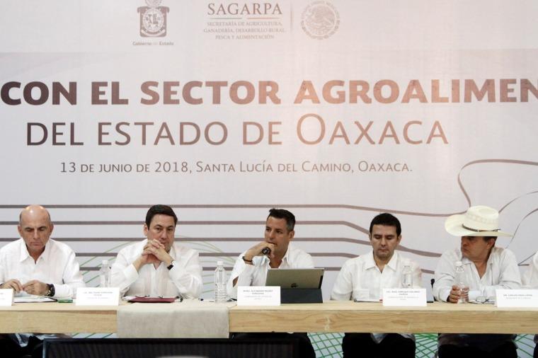 Refrendan Gobierno del Estado y Sagarpa compromiso por el desarrollo agropecuario de Oaxaca (7).jpeg